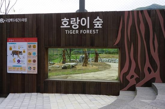 축구장 7개 크기의 호랑이숲