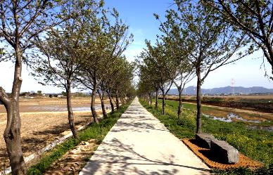 5월 걷기여행길 7선, 싱그러운 봄 날씨와 어울리는 길;JSESSIONID_KOREA=TL7zbCSpzTWCbtLZqH1rQvHbnCCpvTy3Ztn7qRD1Fn2J9bWGPMtX!2050781509!-1529536600