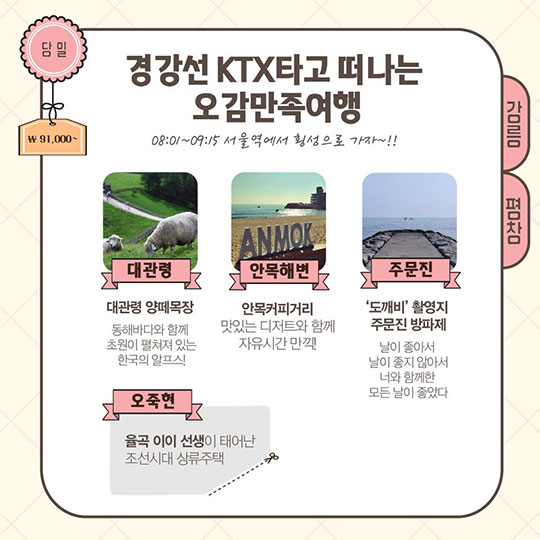 4명이 5만원에 KTX 타고 강릉 가는 법