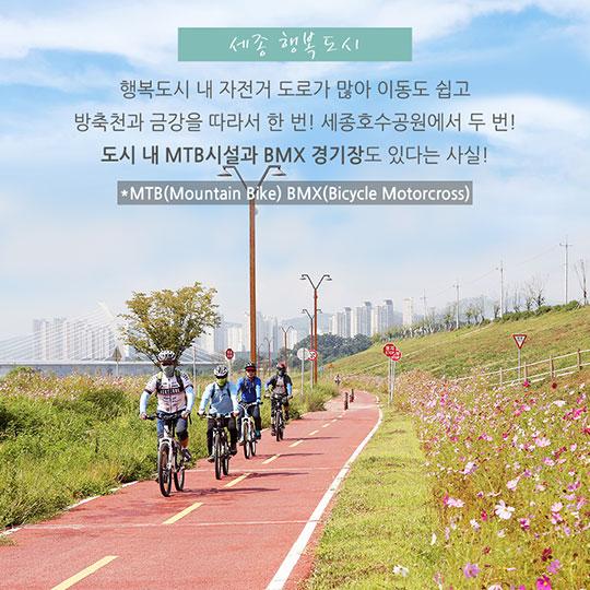 자전거 타기 좋은 도시 BEST 5