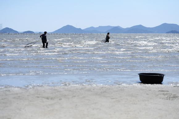 화도 고기잡이 체험 후리질. 여름철이면 화도에 머무르는 여행객들을 위해 종종 어촌계장과 설씨는 후리질로 고기를 잡는다.