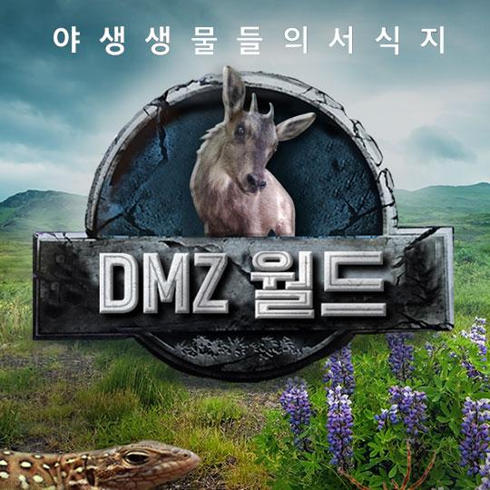어서와~ DMZ 월드는 처음이지?