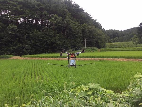 농업용 드론이 농약을 살포하는 모습.