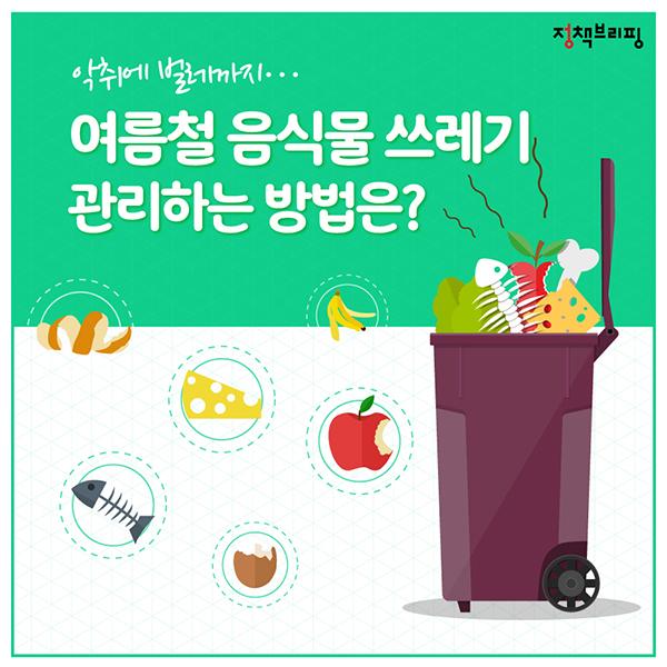 여름철 음식물 쓰레기 관리 비법 6가지