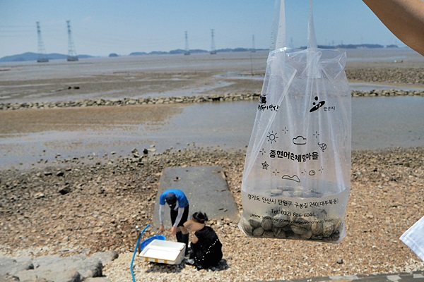 직접 잡은 바지락등은 깨끗한 해수로 해감하여 포장해준다.
