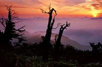 덕유산, 남방의 산 중에서 가장 기이한 산