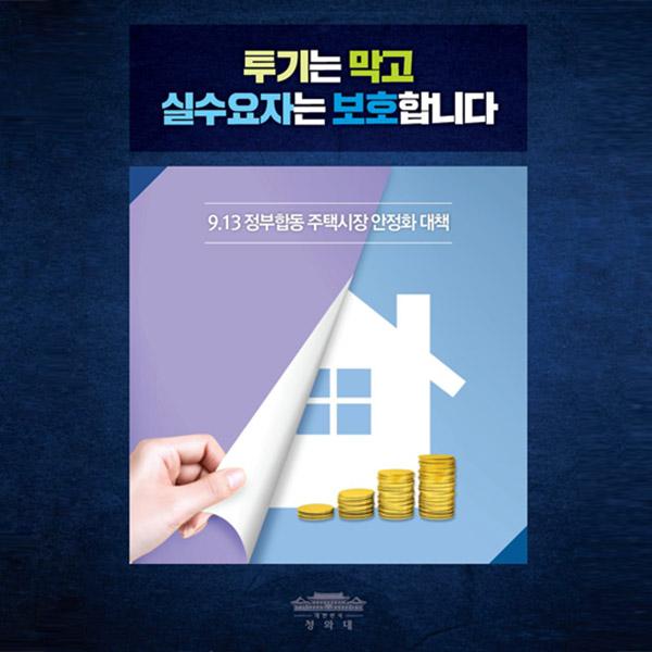 9.13 정부합동 주택시장 안정화 대책