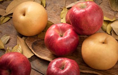 추석 선물용 맛있는 과일 고르는 요령