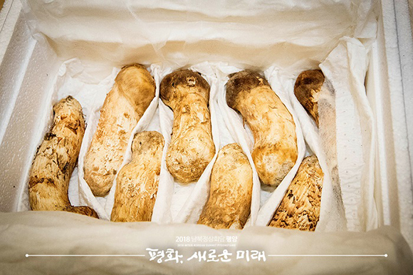 김정은 위원장, 송이버섯 2톤 선물