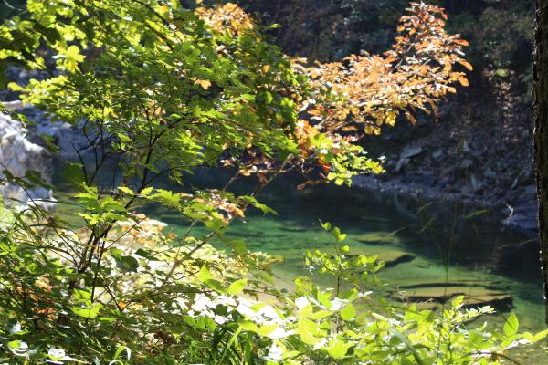 투명한 옥색 물빛을 자랑하는 양구 두타연 계곡.