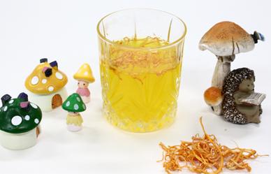 면역 증진에 도움되는 약용버섯 차 3가지