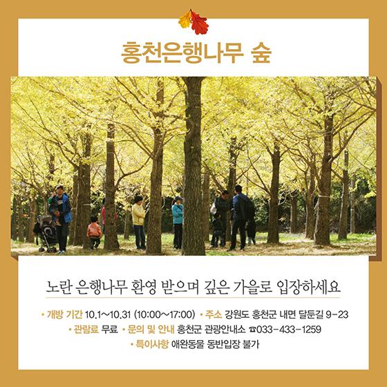 가을여행주간에 열리는 미개방관광지 6곳