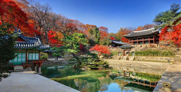 단풍으로 물든 궁궐에서 가을 절경 즐겨볼까