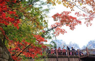 즐거운 가을산행의 시작은  안전수칙 준수