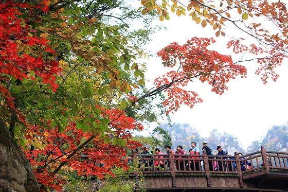 남설악 오색지구 주전골에 많은 등산객이 몰려 산행을 즐기고 있다.(사진=저작권자(c) 연합뉴스, 무단 전재-재배포 금지)