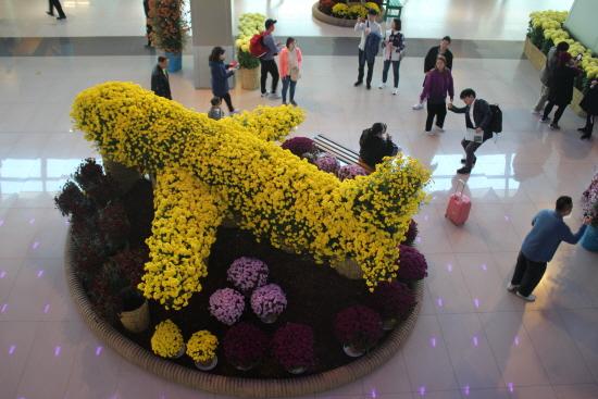 김포공항 랜드마크가 될 노란 비행기 꽃.