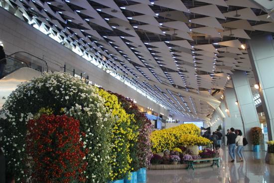 공항을 산뜻하게 해주는 꽃.