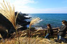 내년 국내여행 계획 미리 세우세요…봄, 가을 여행주간 확정