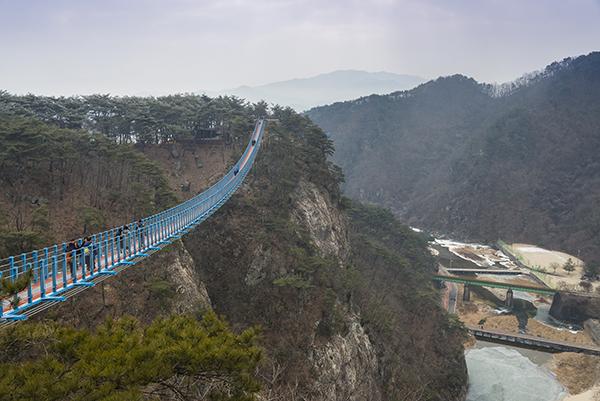 소금산 출렁다리. 국내에서 가장 긴 산악보도교이다.