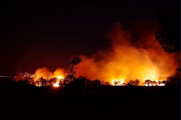 산불은 타기 쉬운 나무로 쉽게 번지고  화재면적이 넓으며 지형특성상 진압하기 힘들다. (출처=픽사베이)