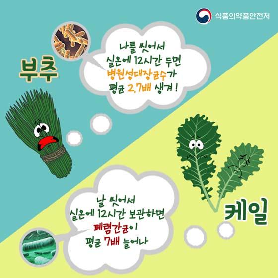 씻어서 둔 채소에 균이 더 많이 생긴다?