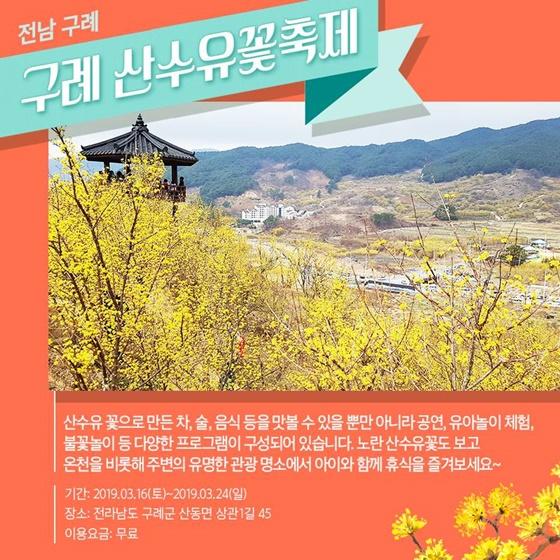 꽃향기 가득한 봄꽃축제 5