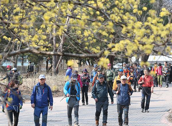 서울 도봉구 도봉산을 찾은 상춘객들이 봄 기운을 온몸으로 느끼며 산을 내려오고 있다.(사진=저작권자(c) 연합뉴스, 무단 전재-재배포 금지)