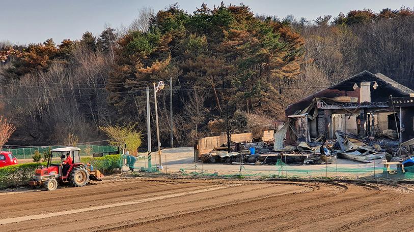 농식품부, 강원 산불 피해 농업인 영농복귀 총력 지원