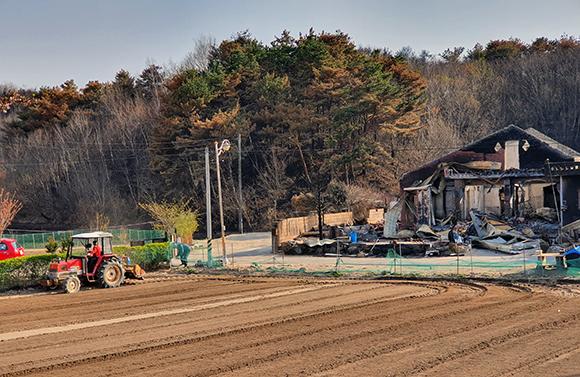 산불 피해지역인 강원 고성군 토성면 용촌리에서 지난 16일 한 주민이 트랙터로 밭을 정리하고 있다. (사진=저작권자(c) 연합뉴스, 무단 전재-재배포 금지)