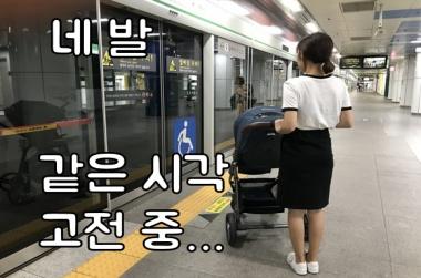 네 발로 지하철 이용해본 적 있나요?