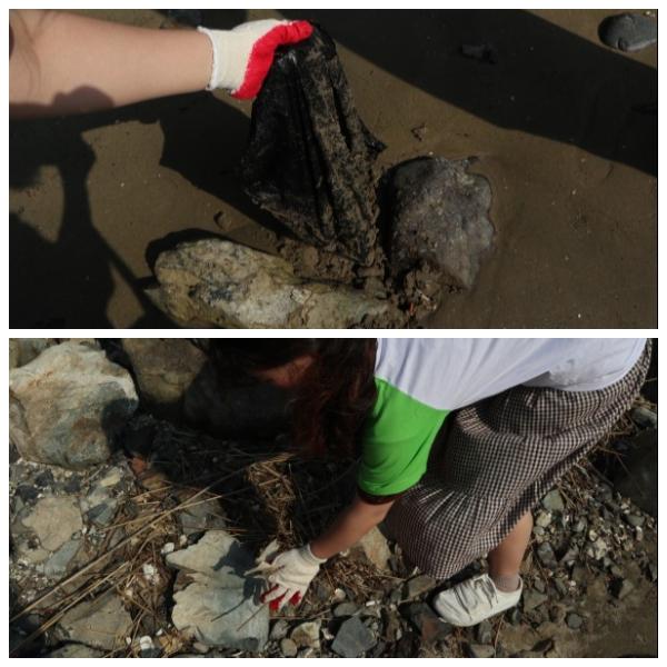 부산 다대포 연안에서 쓰레기를 줍는 기자단