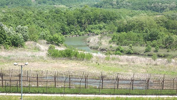 화살머리고지에 서다…철원 DMZ 평화의길 가보..