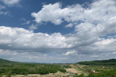 [가보니] 철원 DMZ서 때묻지 않은 원시림을 만나다