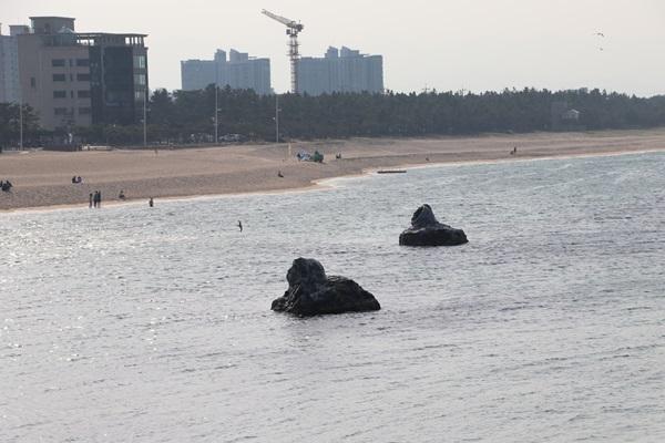 경포 안목해변