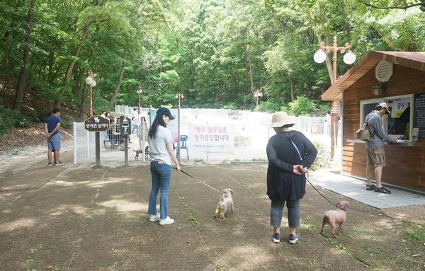 가정에서 애견을 키우면서 동물등록을 하지 않았다면 7월1일부터 8월31일까지 시·군·구 및 가까운 동물병원(등록대행기관)에 가서 꼭 등록하기 바란다.
