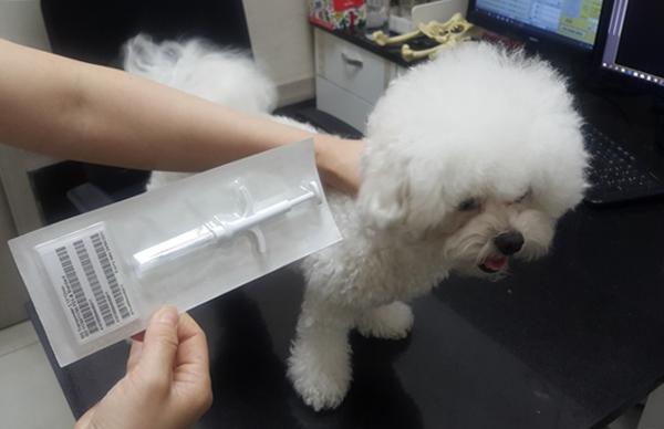 동물등록에 사용되는 마이크로칩(RFID, 무선전자개체 식별장치)는 체내 이물 반응이 없는 재질로 코팅된 쌀알만한 크기다.