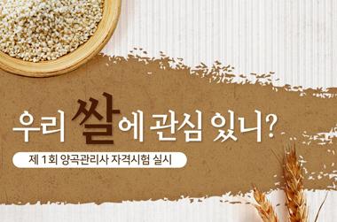 '우리 쌀에 관심 있다면?'…'양곡관리사' 국가자격제 신설