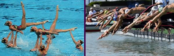 아티스틱 수영 (왼쪽) 과 오픈워터(오른쪽)