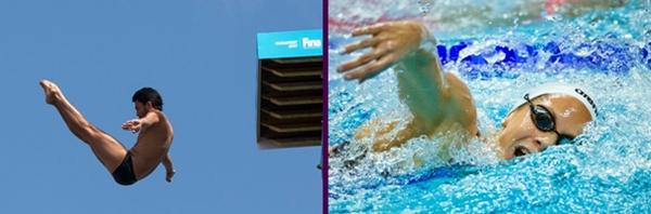 하이다이빙(왼쪽)과 경영(오른쪽)