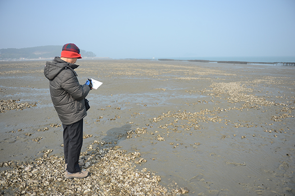 고향 서산 바닷가에서 시를 쓰고 시를 그리는 이생진 시인의 모습.