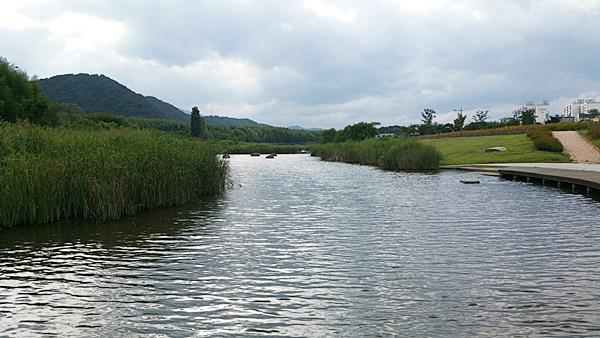 백로와 떼까마귀 등 철새들의 낙원으로 유명한 태화강