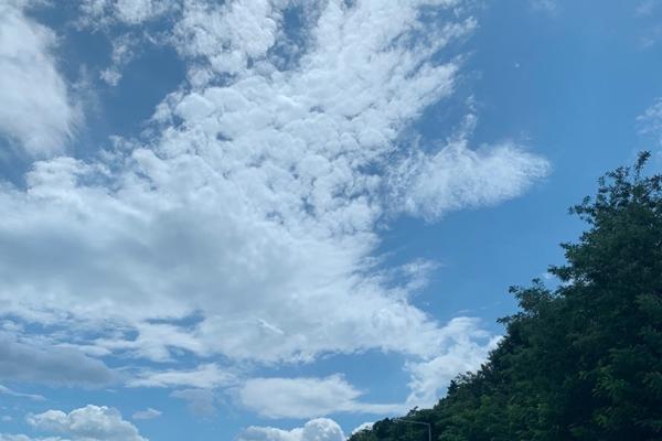 부모님과 여행을 다녀오기로 한 날, 파란 하늘이 발걸음을 가볍게 만들어줬다.