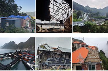 태풍 '링링' 피해 강화군·신안군 흑산면 특별재난지역 선포
