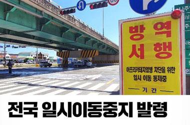 김포·파주 아프리카돼지열병 확진…전국 일시이동중지 발령