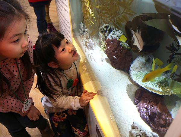 아이들이 키즈 아쿠아리움에서 다양한 해양생물들을 관찰하고 있다. (사진=저작권자(c) 연합뉴스, 무단 전재-재배포 금지)