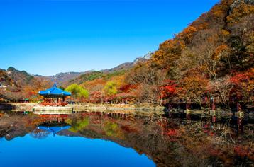 봄꽃보다 아름다운 가을 단풍 여행지