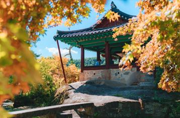 10월의 걷기여행길 5선, 아름다운 황금들녘 길