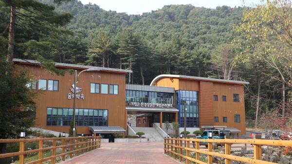 전국 최대의 잣나무 숲에 문을 연 가평군 환경설질환예방관리 센터