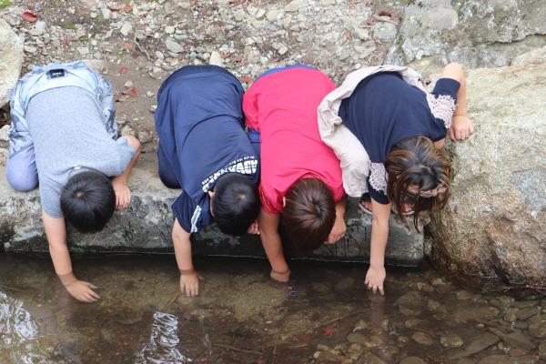 환경성질환예방관리센터를 찾은 어린이들이 자연과 어울리며 치유의 시간을 갖고 있다(사진=환경성질환예방센터)