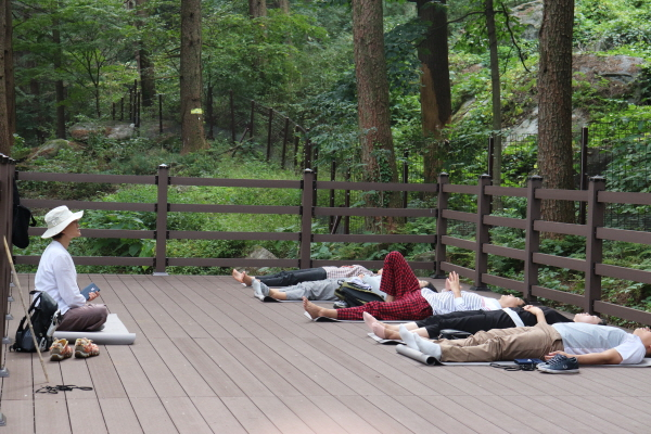 환경설질환예방센터 프로그램에 참가한 시민들이 숲속에서 명상을 하고 있다.(사진=환경성질환예방센터)